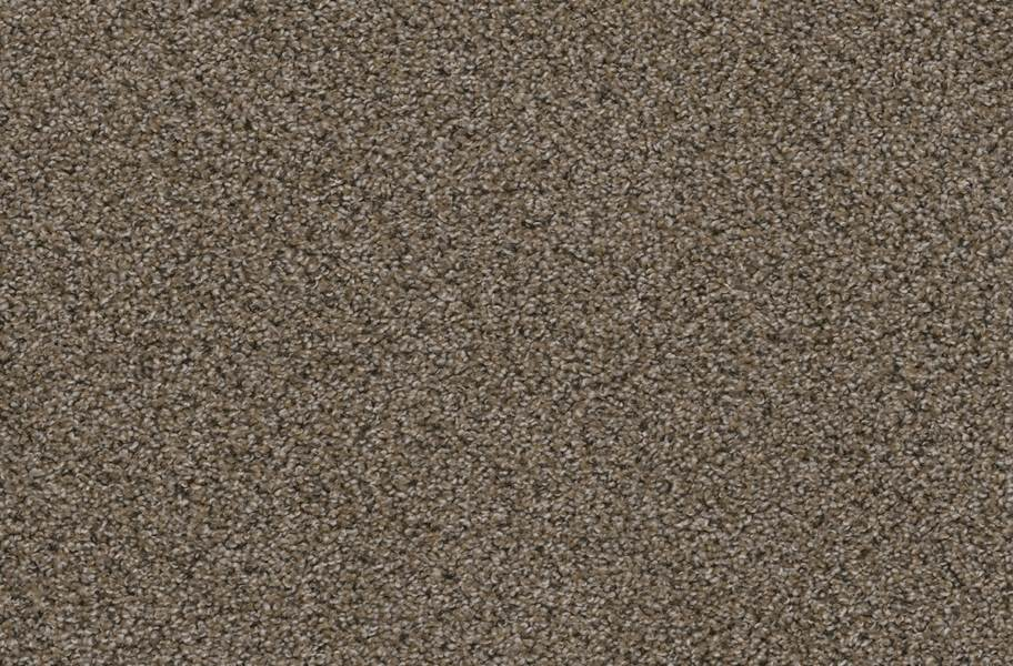 Walk in the Park Carpet Tile with Pad - Copper Mine