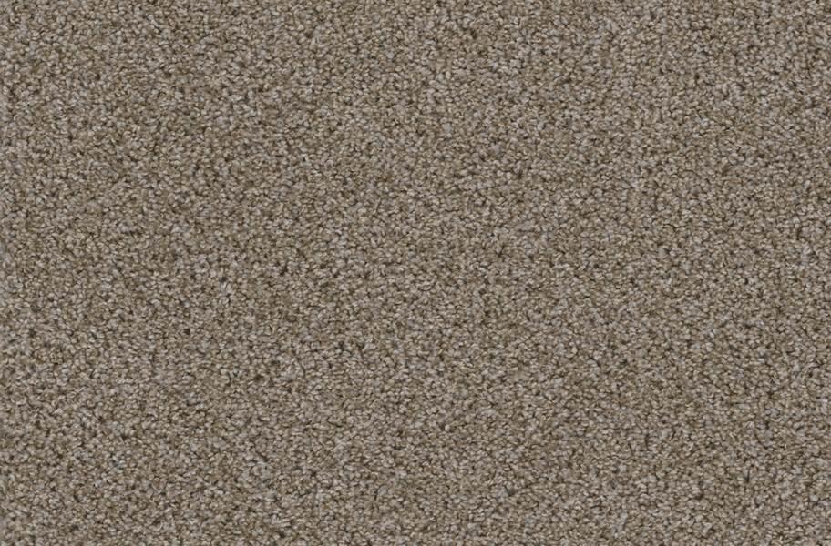 Walk in the Park Carpet Tile with Pad - Granite