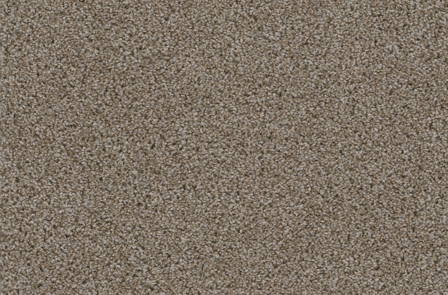 Walk in the Park Carpet Tile with Pad - Granite