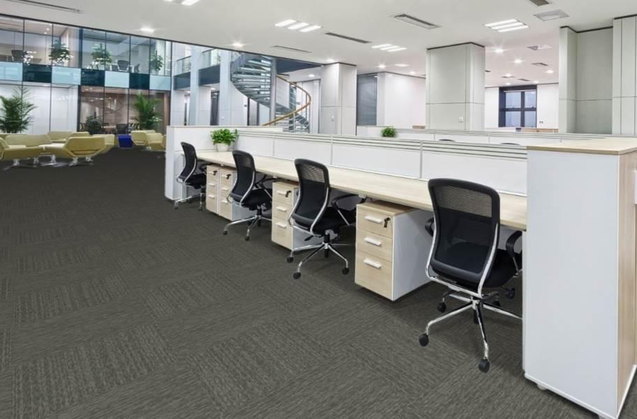 Pentz Visionary Carpet Tiles - Clever