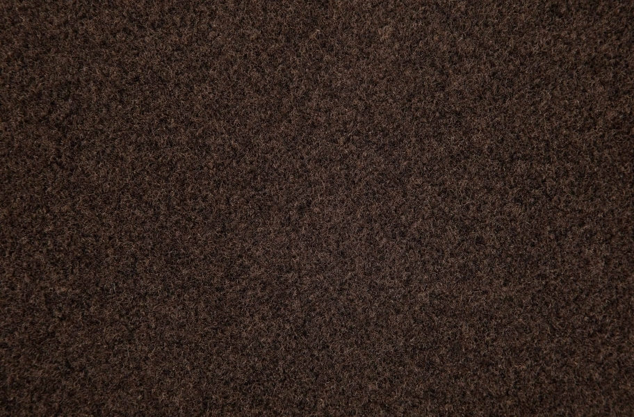 Lakeshore Indoor Outdoor Carpet - Mocha