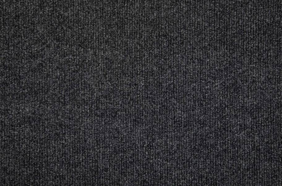Oceanside Indoor Outdoor Carpet - Black Ice
