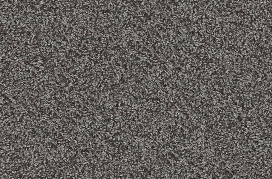 Floorigami Carpet Diem Carpet Plank - Cozy Taupe