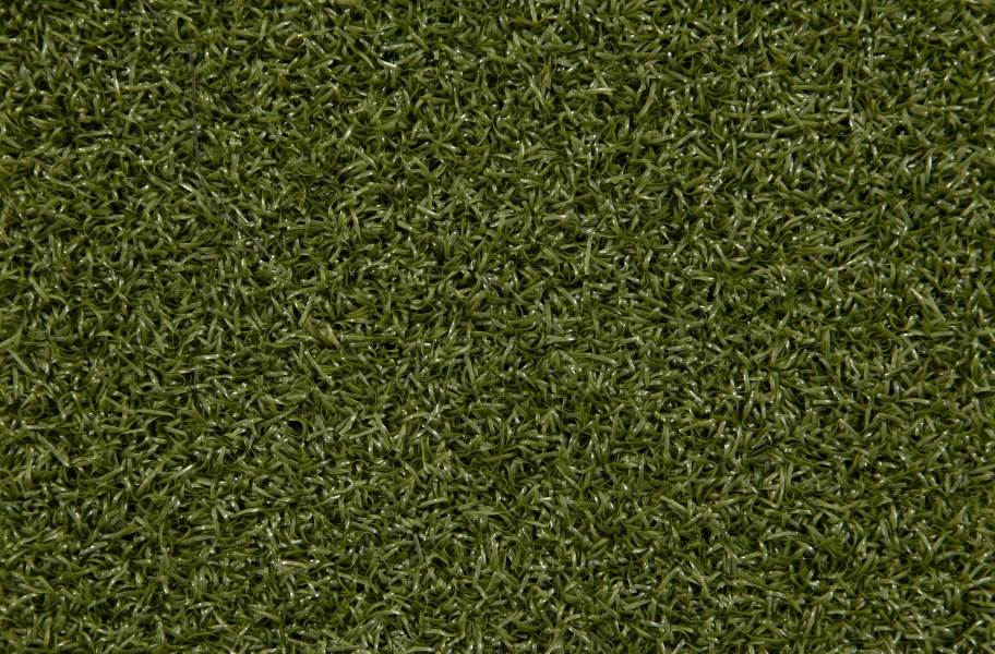 Ecore at Home FITturf Plus - Green