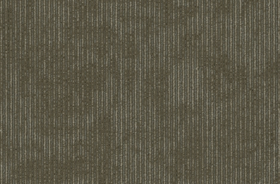 Shaw Biotic Carpet Tile - Distinction