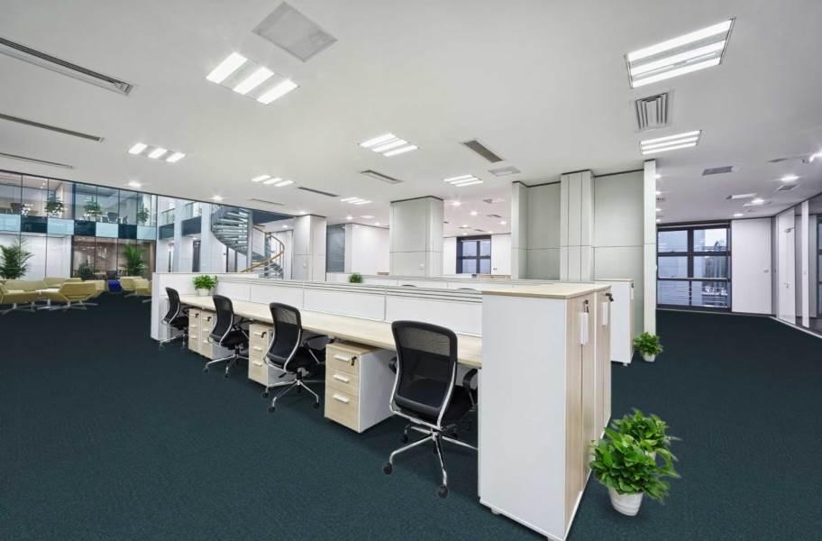 Pentz Uplink Carpet Tiles