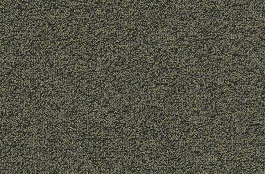 Pentz Chivalry Carpet Tiles - Generous