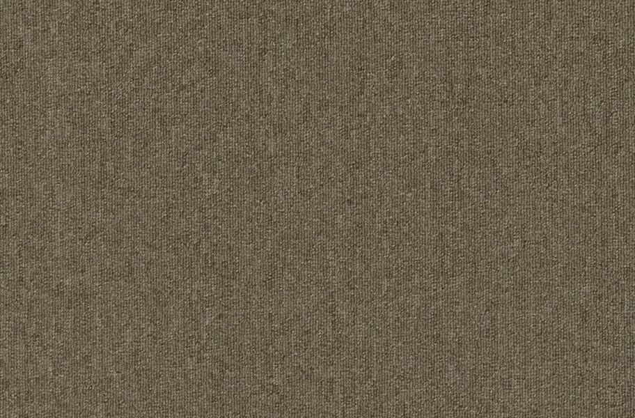 Pentz Uplink Carpet - Praline