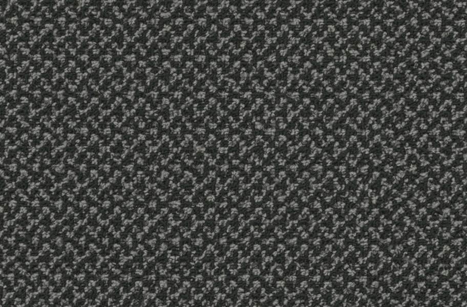 Pentz Outlaw Carpet - Hoodlum
