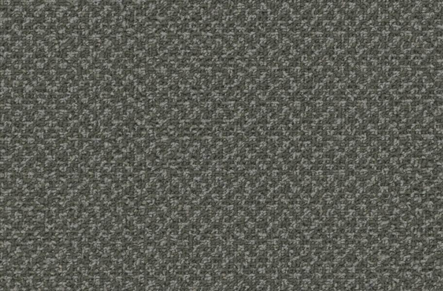 Pentz Outlaw Carpet - Outcast