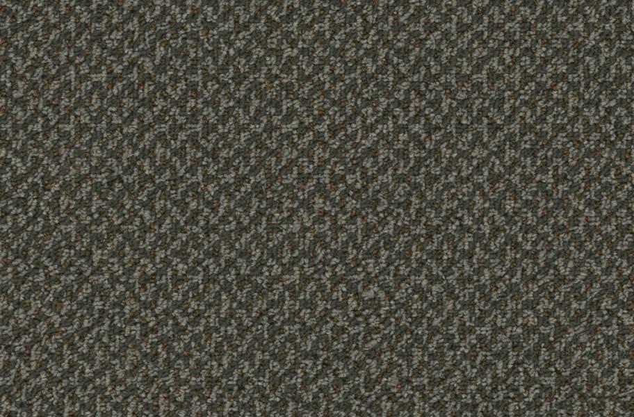Pentz Outlaw Carpet - Bandit