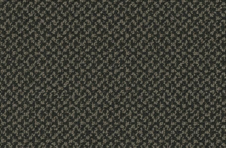 Pentz Outlaw Carpet - Fugitive