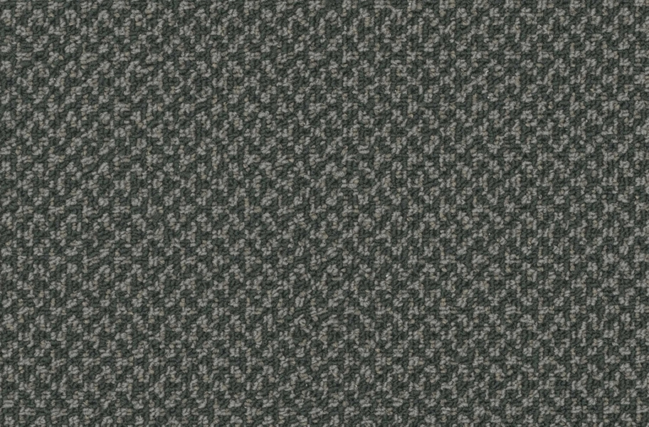 Pentz Outlaw Carpet - Marauder