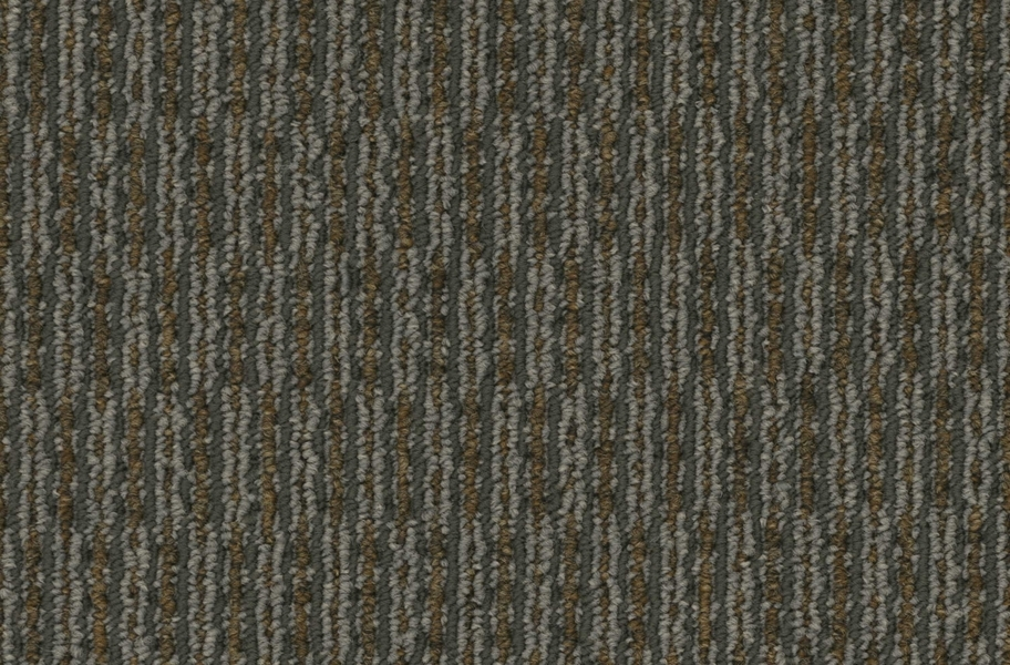 Pentz Rogue Carpet - Bandit