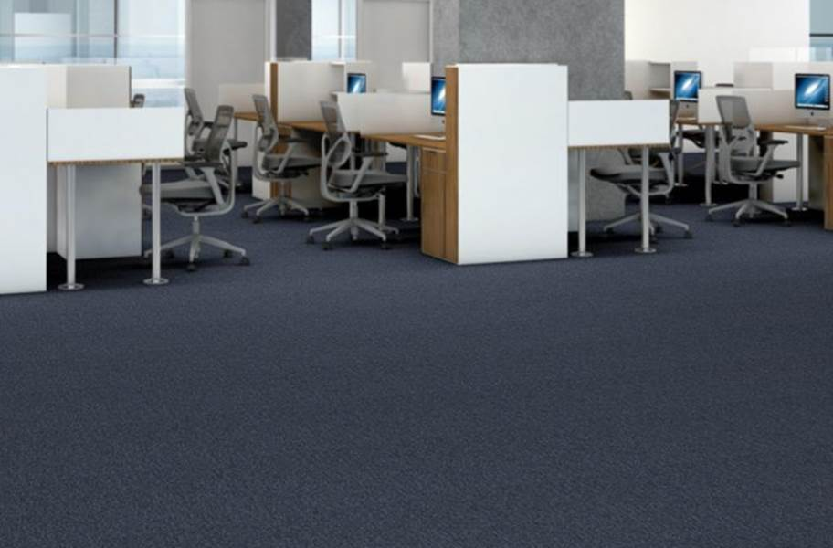 Shaw Profusion Carpet - Multitude
