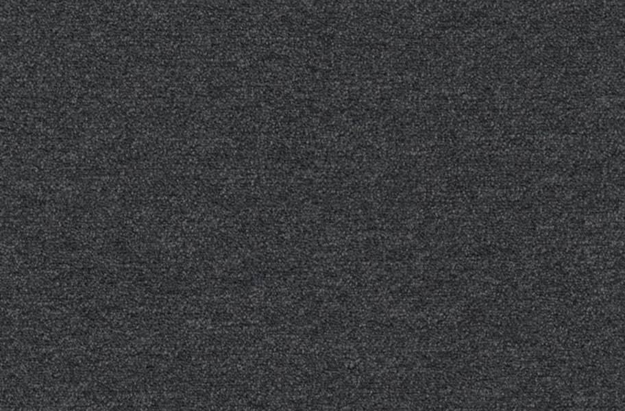 Shaw Profusion 20 Carpet - Plethora