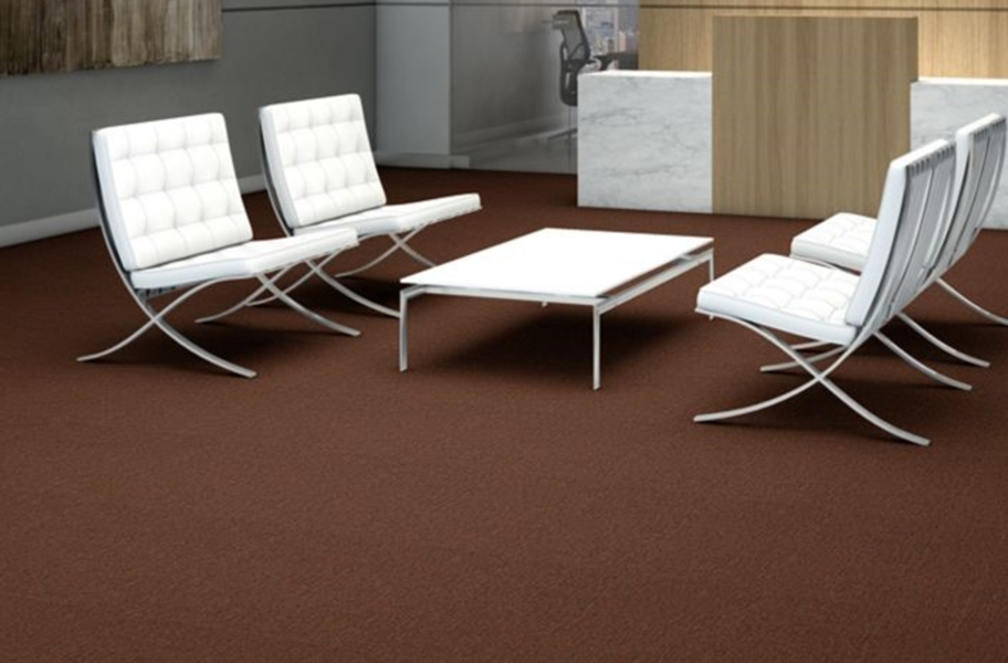 Shaw Profusion 20 Carpet - Surplus