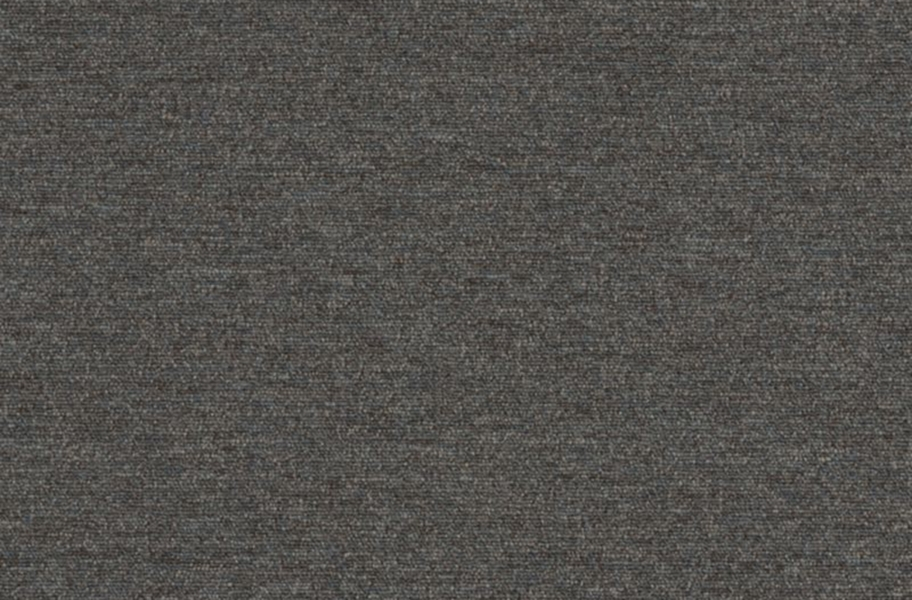 Shaw Profusion 20 Carpet - Oodles