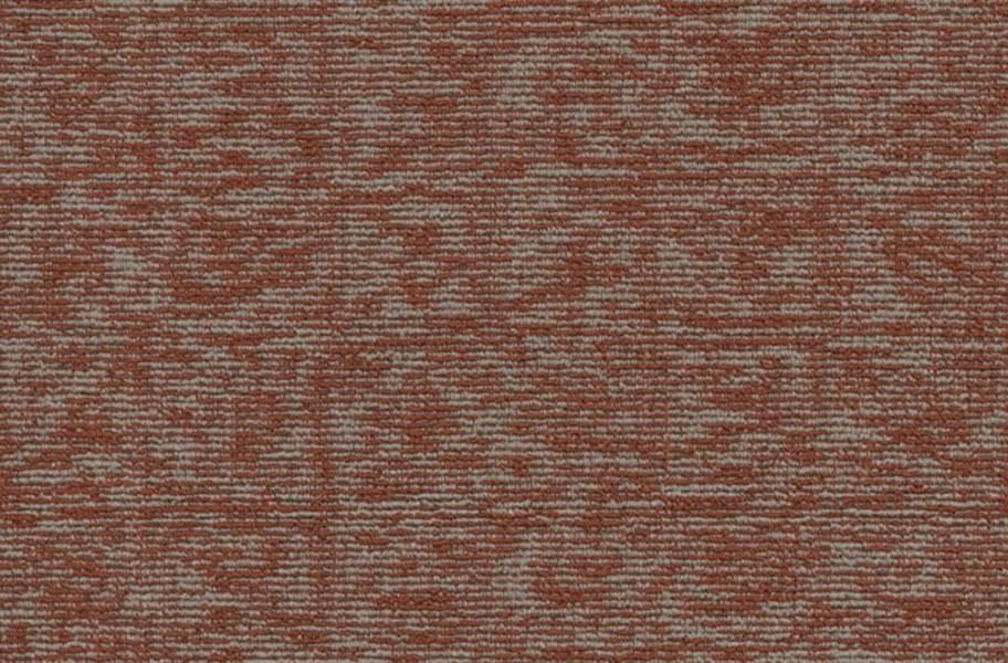 Shaw Elemental Carpet - Integral
