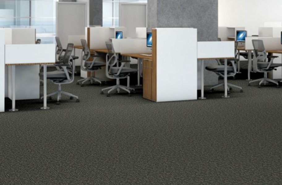 Shaw Elemental Carpet - Primitive