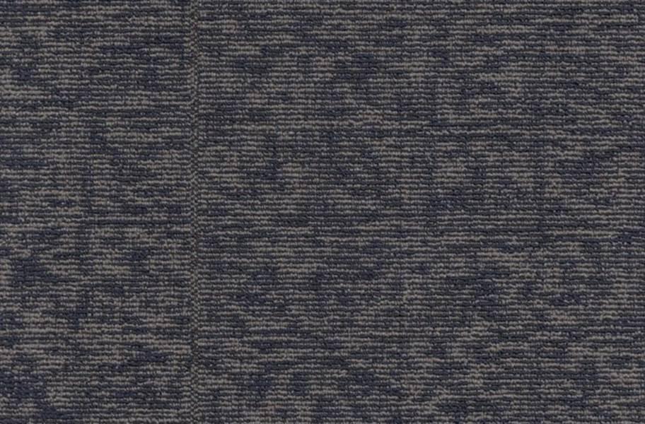 Shaw Elemental Carpet - Primary