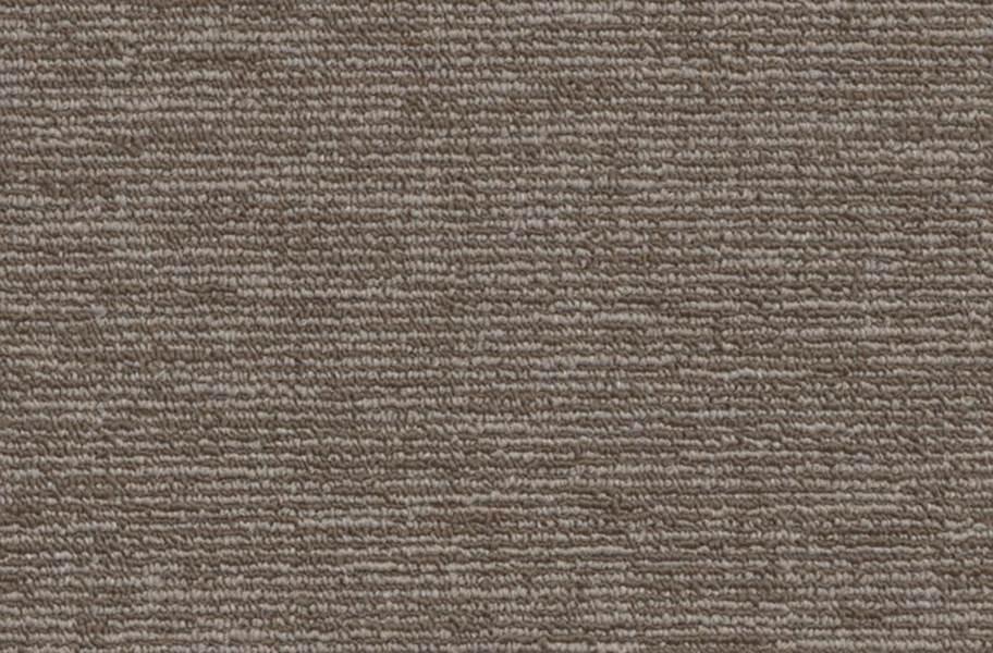 Shaw Engrain Carpet - Sustainable