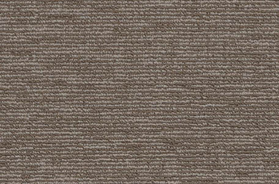 Shaw Engrain Carpet - Sustainable