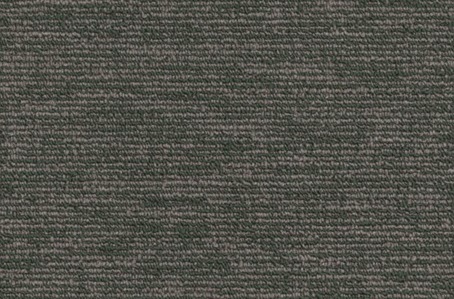 Shaw Engrain Carpet - Primitive
