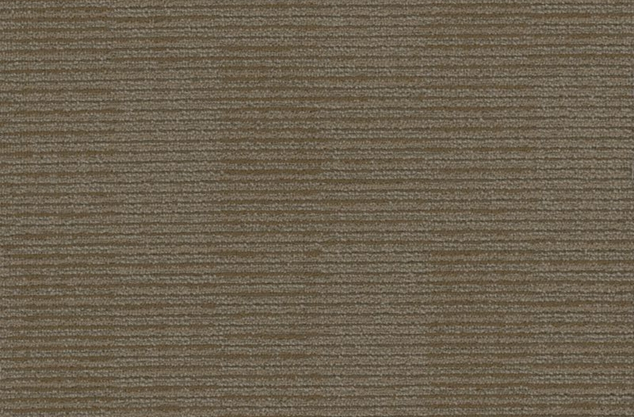 Shaw Fact Carpet - Corporation