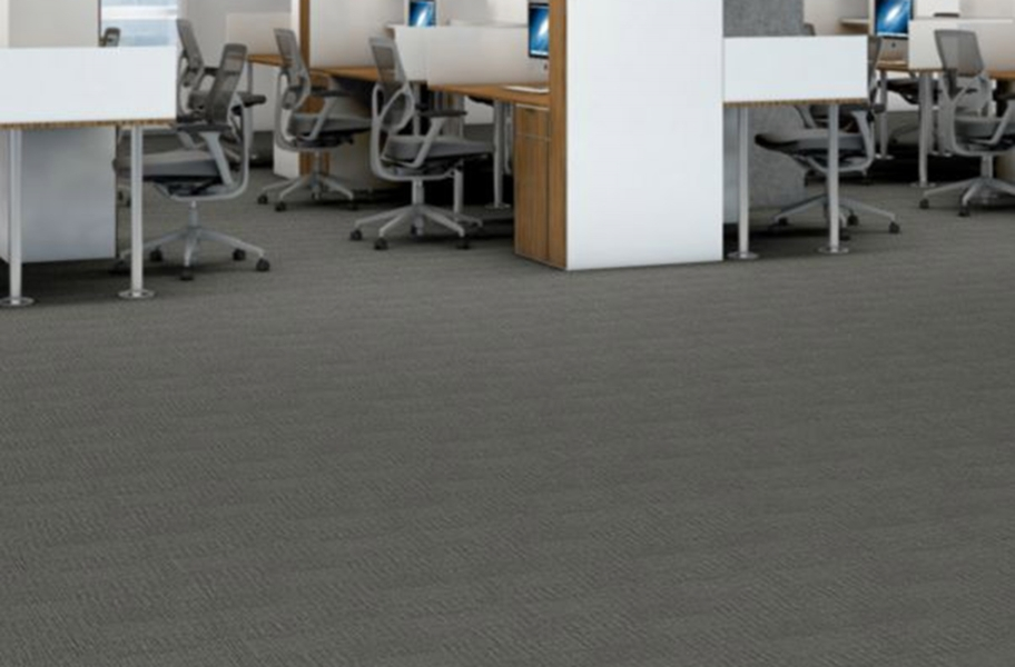 Shaw Fact Carpet - Goodwill
