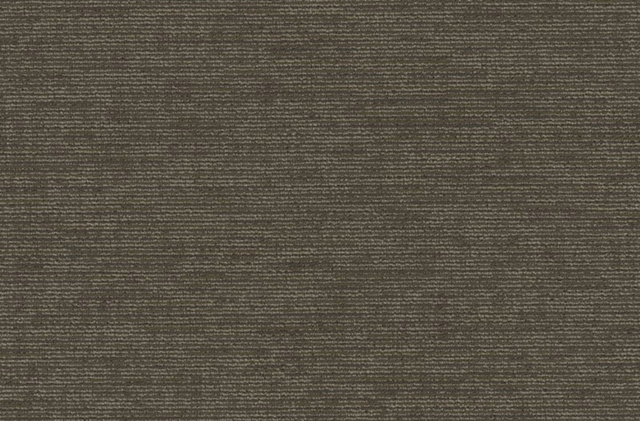 Shaw Function Carpet - Conservative