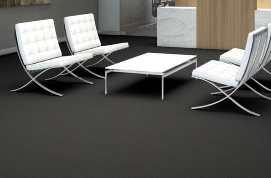 Shaw Function Carpet - Competitive