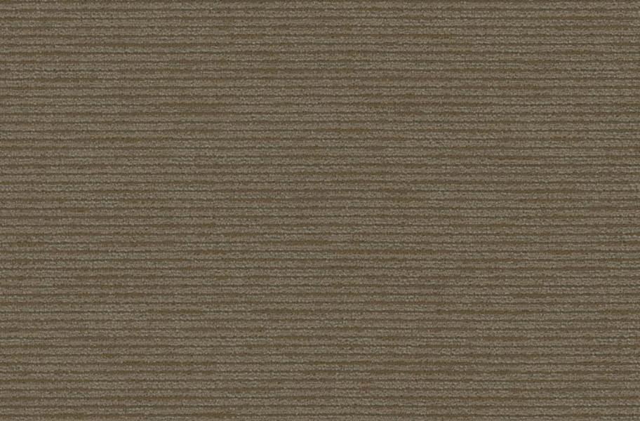 Shaw Function Carpet - Corporation