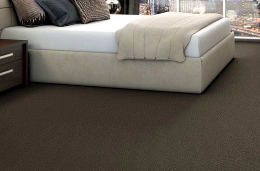 Shaw Function Carpet - Go To Market