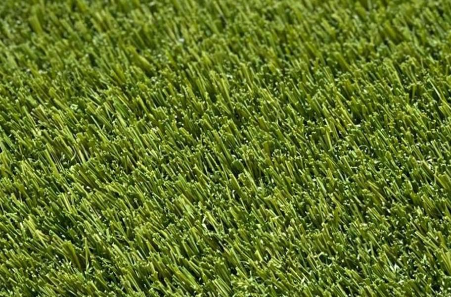 Pet Pro Turf Rolls - Field/Olive Green