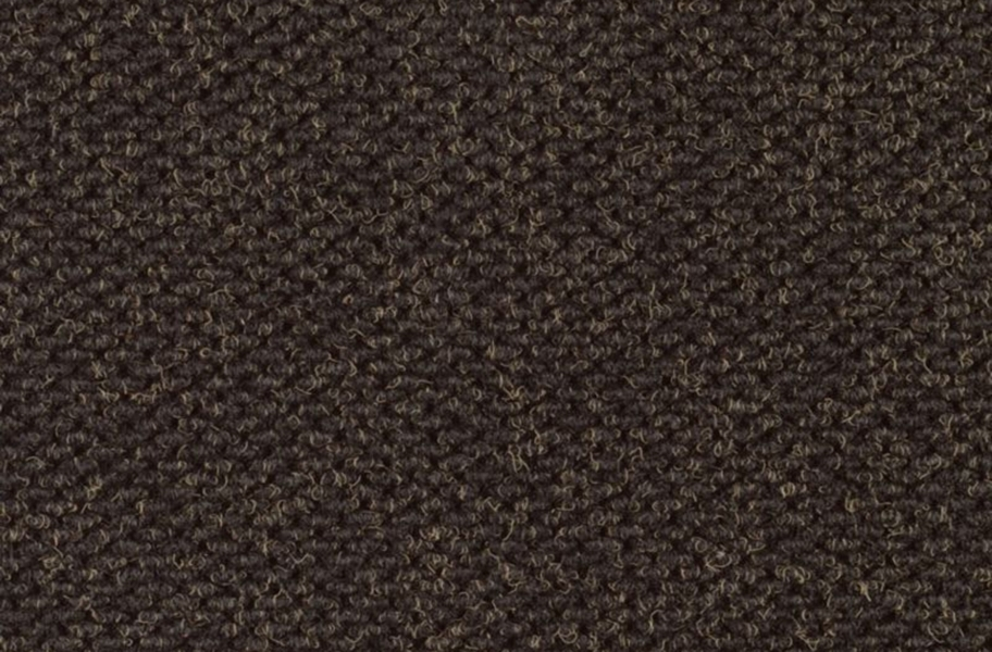 Shaw Succession II Walk-Off Carpet Tile - Tarmac