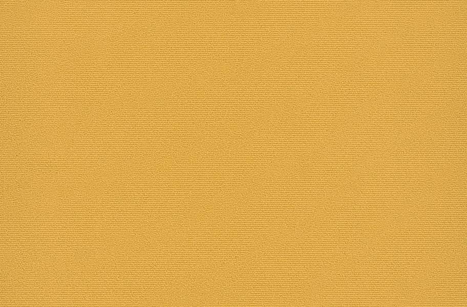 Pentz Colorburst Carpet Tile - Medallion