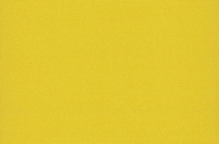 Pentz Colorburst Carpet Tile - Cyber