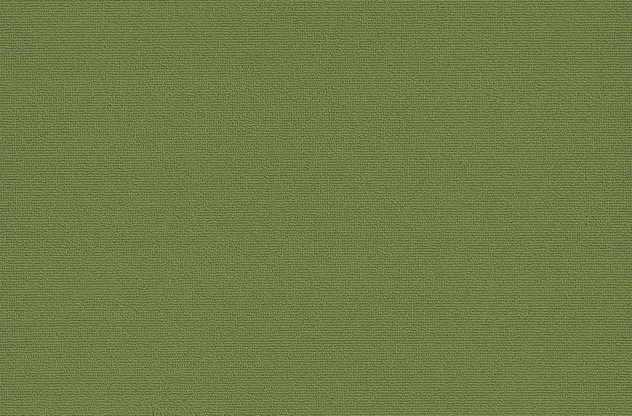 Pentz Colorburst Carpet Tile - Parrot