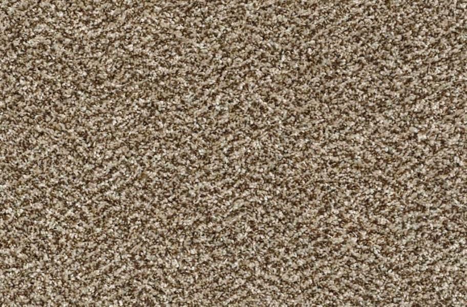 Shaw Charmed Hues Carpet - Honey Bear