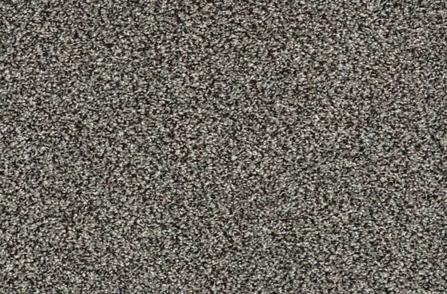Shaw Charmed Hues Carpet - Meteorite