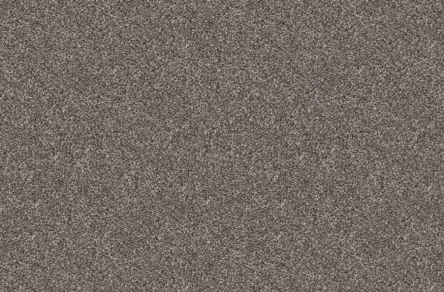 Shaw Charmed Hues Carpet - Warm Onyx