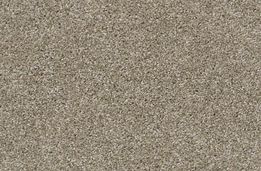 Shaw Charmed Hues Carpet - Wild Truffle