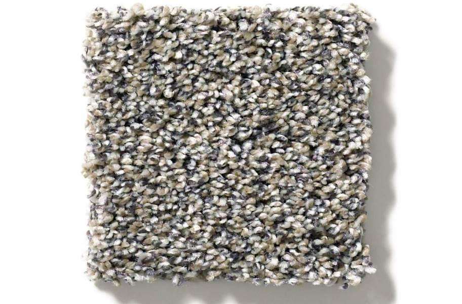 Shaw Charmed Hues Carpet - Castle - Texture