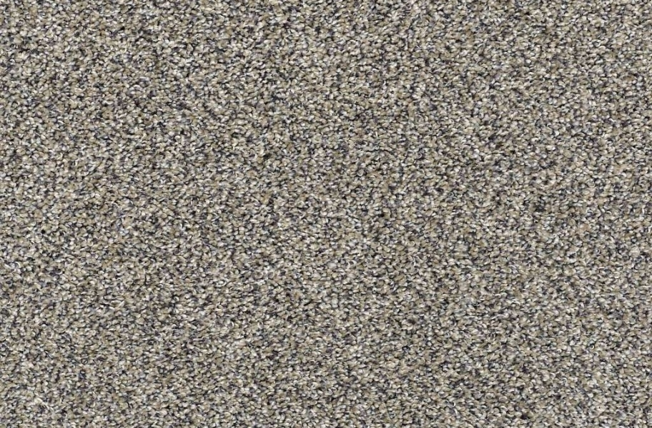 Shaw Charmed Hues Carpet - Castle