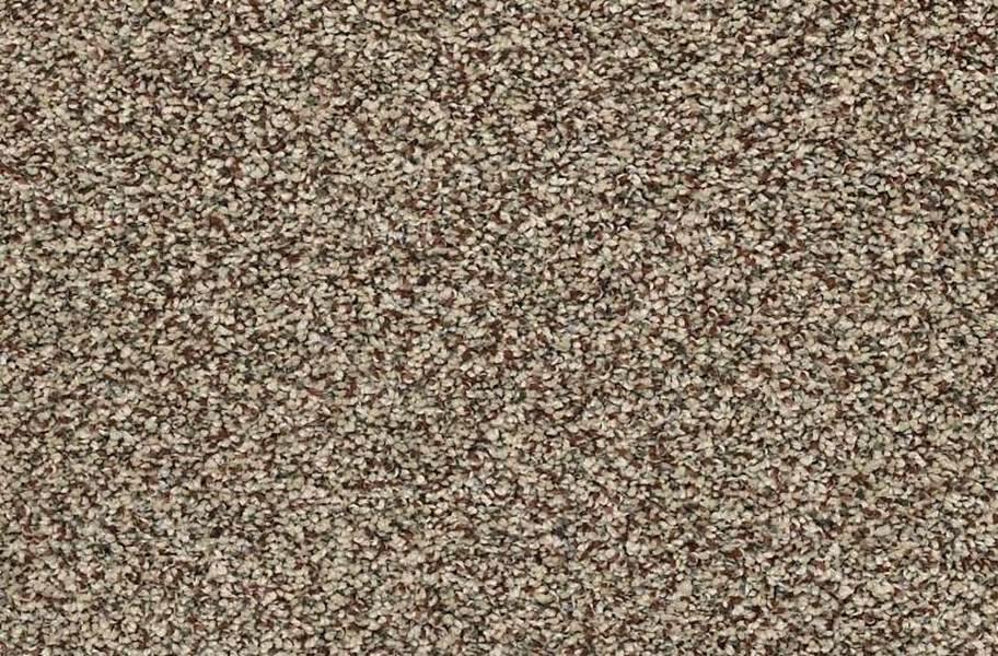 Shaw Perpetual I Waterproof Carpet - Freckles