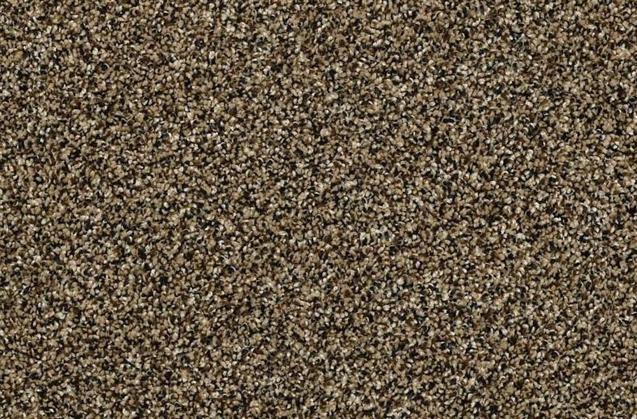 Shaw Perpetual I Waterproof Carpet - Gold Rush