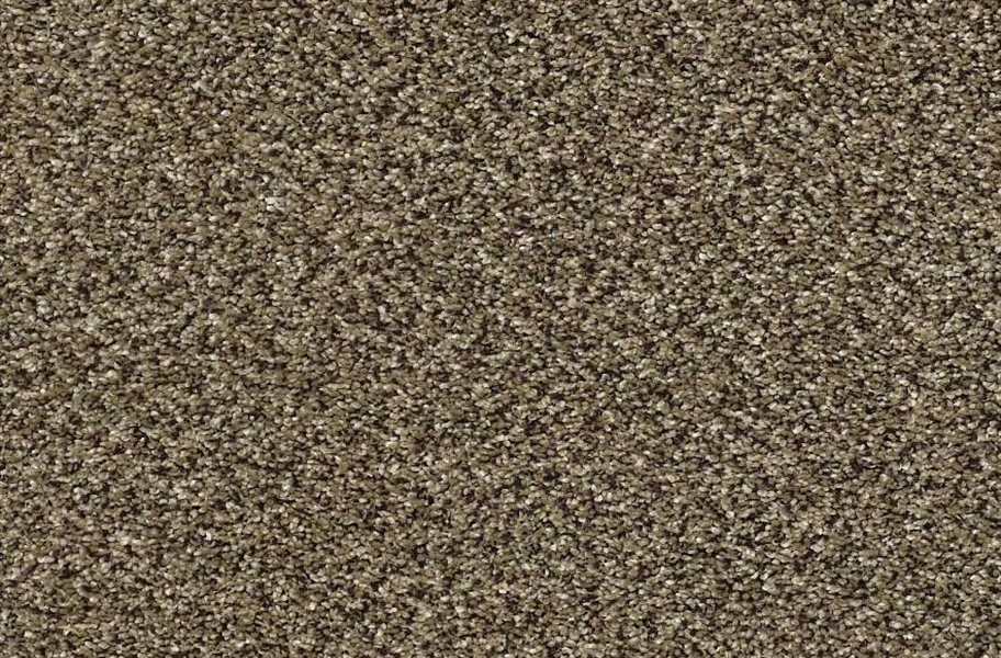 Shaw Perpetual I Waterproof Carpet - Leather