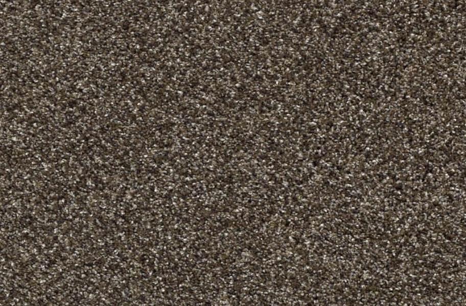 Shaw Perpetual I Waterproof Carpet - Oatmeal