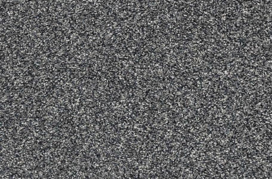 Shaw Perpetual I Waterproof Carpet - Steel